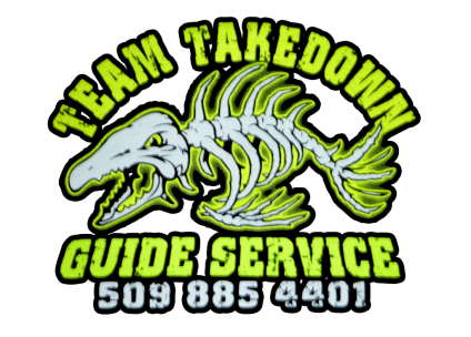 Team Takedown Logo.psd